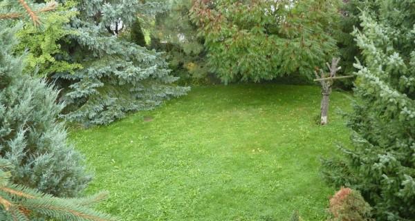vyhled z terasy na zahradu 2